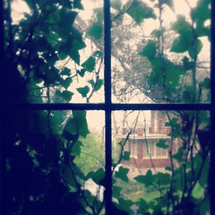 (kitschcafe) Tags: street ohio brown house green home window overgrown landscape outside spring natural cincinnati secret ivy hidden growth frame mysterious inside leaded lead windowpane iphone lookingout instagram