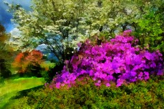 Spring Lavender Tree (snapnpiks) Tags: auto portrait color love colors vegetables smart yellow collage digital pencil watercolor photo artwork funny soft dynamic bright god drawing embroidery vibrant father jesus fine cartoon felt 11 lord klimt professional canvas tip virtual monet pastels painter caricature bible restoration illustrator editor gouache pallet benson camille heavenly starry oilpainting sargent rendering cezanne tempera paintbrushes realism gmx pointillism colorpencils hillarious impasto fauvist fauvism painter5 smackman snapnpiks portraitlist photopainter21 gothicoils
