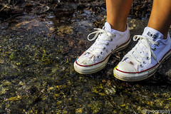 Converse (Rriahh_) Tags: life lighting camera new york blue trees light shadow red people brown sun white plant jenna black blur cold color detail green art texture ice broken nature water colors beautiful lines yellow rock contrast writing dark lens outside evening frozen photo words spring cool focus friend paint pretty day glow glare different shadows close view angle legs bright character gray shapes upstate calm line dirt human converse saturation syracuse sharpen placement shape depth tone laces