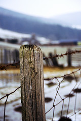 Fence (Saturated Imagery) Tags: snow film wales 35mm fence slidefilm e6 conwy canoneos300 e100g cwmpenmachno kodakektachrome100g
