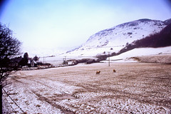 Moel (Saturated Imagery) Tags: mountain snow film wales 35mm slidefilm e6 conwy moel canoneos300 cwmpenmachno kodakektachrome100g