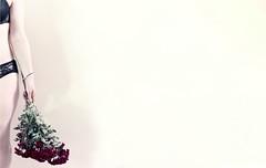 26-4-2013 (Copperhobnob) Tags: flowers underwear song explore negativespace jfdi pulp wah