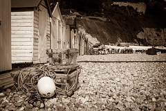 Untitled (2013-04-29 16:13:55) (Ian Hosker) Tags: sea summer fish tourism beach beer boats coast seaside fishing village tourists devon jurassic