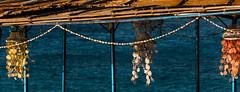 Funny ceiling lights (robertofaccenda.it) Tags: sea vacation espaa praia beach boat spain barca mare seasons estate playa ibiza spiaggia holydays vacanze spagna stagioni baleares baleari