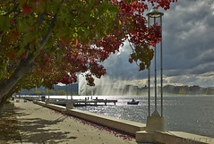 Canberra's Lake Burley Griffin and Captain Cook Fountain (i-lenticularis) Tags: leica m8 canberra lakeburleygriffin captaincookfountain leicam8 cv3514