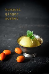 Kumquat Ginger Sorbet (abrowntable) Tags: ice fruits fruit recipe dessert ginger frozen citrus recipes sorbet kumquat kumquats citrusy sorbets frozentreats frozendesserts