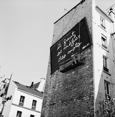Not a Man (Purple Field) Tags: street bw paris france 120 6x6 tlr film monochrome analog rolleiflex square alley kodak trix 400tx medium   f28  schneider kreuznach 80mm    28f  xenotar        stphotographia x