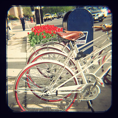 TtV2013:may ~ chicago (Thonk!) Tags: argus argusseventyfive ttv argus75 throughtheviewfinder ttv365