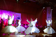Dance (Q.Charlene) Tags: blue sea summer sunshine turkey golden dance nikon seagull istanbul mosque horn galata