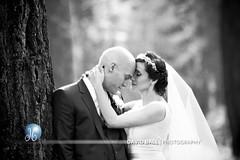 018 (DB-Photography) Tags: wedding lake forest groom bride woods tahoe laketahoe edgewood southlaketahoe