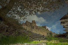 Reflection (naser.shirmohamadi) Tags: sky mountain lake reflection tree nature naser   shirmohamadi