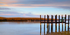 veldrif winter20 (WITHIN the FRAME Photography(5 Million views tha) Tags: sunrise landscape veldrif estuary reeds poles reflections silhouettes southafrica travels tourism westcoast fuji xt1