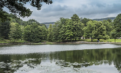 Darran Park Lake Ferndale Rhondda (2) (Mal.Durbin Photography) Tags: rhonddacynontaf rhonddacynontaff rct rctlandscape maldurbin walesuk southwalesuk