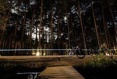 The Forest (\Nicolas/) Tags: forest fort nuit night long exposure pose longue arbre tree cycle