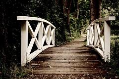 Brcke im Park (Jualbo) Tags: small bridge park nature summer 2016 august sommer brcke kleine allee bume natur