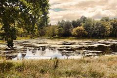 Little Loch (clarktom845) Tags: water loch beatock scotland nature
