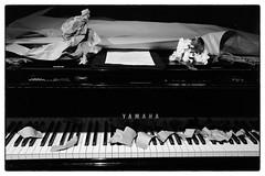 Philip Corner & Phoebe Neville @ Cafe Oto, London, 19th September 2016 (fabiolug) Tags: paper paperpiece benjaminpatterson keys philipcorner phoebeneville piano pianoforte pianist composer fluxus cafeoto london dalston music gig performance concert live livemusic leicammonochrom mmonochrom monochrom leicamonochrom leica leicam rangefinder blackandwhite blackwhite bw monochrome biancoenero 35mmsummicronasph 35mmf2summicronasph summicronm35mmf2asph summicron35mmf2asph 35mm summicron leicasummicron leica35mm