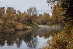 Туманная река Лемью