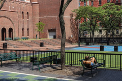 Quiet Before School Starts (CVerwaal) Tags: architecture benches huntercollegeelementaryschool squadronaarmory uppereastside nyc sonyrx100iii