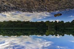 Mirror (Cheeky Lens) Tags: suttoncoldfield birmingham nature suttonpark uk unitedkingdom sonyalpha lake water sky