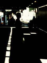 Shadows (Peter Schler) Tags: schatten shadows stuttgart germany deutschland flickr peterpe1 pse sonnenflecken sunspots