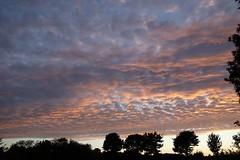 Mackerel Sky (Spenny Manor) Tags: mackerel evening sundown