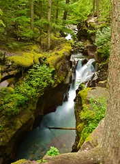 Secluded falls, Glacier National Park, Montana (tvdflickr) Tags: montana glacier glaciernationalpark waterfall water falls copyright photobytomdriggers thomasdriggersphotography photosbytomdriggers nikon d750 nikond750