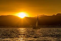 Le coucher  Marinasmir. (Bouhsina Photography) Tags: sunset sunrise coucher eau mer voilier bateau silhouette marinasmir maroc morocco ttouan bouhsina bouhsinaphotogrphy canon 7dii sunrays rayons soleil