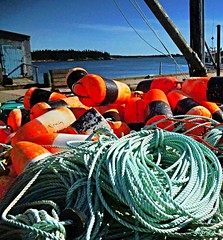 Waiting for Lobster Season (photo fiddler) Tags: buoyant buoy littleharbour wharf canada september 2016 rope