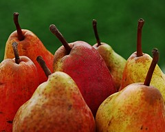 Sweet autumn (heinrich_511) Tags: sptsommer herbst photo 35100mm gm5 lumix color depthoffield cold warm warmth lovely pears sun series fruits autumn sweet