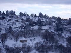 SDC13346 (krixlibux) Tags: winter rotenberg fellbach