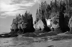 Hopewell Cape (baldenbe (on/off)) Tags: park new bw river landscape bay nikon rocks kodak tide low f100 brunswick nb d76 shore micro cape hp5 60mm pushed nikkor fundy hopewell monolith ilford baie rivage basse atlantique mare monolithe petitkodiak