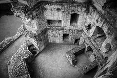 "Raglan Castle • <a style=""font-size:0.8em;"" href=""http://www.flickr.com/photos/32236014@N07/8652829895/"" target=""_blank"">View on Flickr</a>"