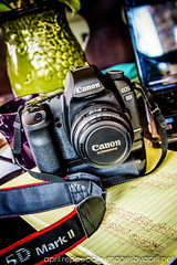 Perfect Camera, Perfect Lens (Images by April) Tags: camera canon 5d markii 550d t2i