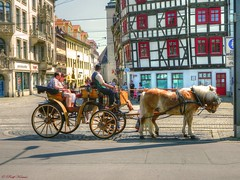 schnes Erfurt (Ralf Krause) Tags: old travel summer holiday history colors beautiful germany deutschland thringen nice europa europe flickr fiesta cathedral erfurt sommer urlaub bonito colores thuringia krmerbrcke alemania altstadt oldtown viejo middleages ferien historia hdr oldbuilding petersberg oldcity farben viajar geschichte cathedralsquare historisch barrioantiguo mittelalter agradable domplatz schn 2011 historically landeshauptstadt predigerkirche edadmedia hdrpictures hdrbilder worldofdetails mygearandme nikoncoolpixl120 rememberthatmomentlevel1 ralfkrause hdrworlds worldofdetailsawardgrouplevel1bronze