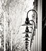 Lamp Line B&W (Orbmiser) Tags: bw building oregon portland spring nikon line sidewalk lamps reptition d90 55200vr
