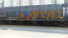 Unknown, Madone, Unknown (Espestosis) Tags: graffiti panel alberta graff hopper freight fr8 wheatie alnx