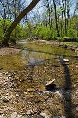 Middle of Lick Creek (kevin-palmer) Tags: trees green water creek illinois spring stream may sunny lick circularpolarizer pekin tazewellcounty tamron1750mmf28 pentaxk5 johntmcnaughtonpark