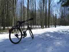 My bike in the forest (realdauerbrenner) Tags: city blue schnee sky snow ice bike forest frozen spring day sweden stockholm tag schweden skandinavien himmel stadt skog sverige blau scandinavia eis wald fahrrad stad frhling bicylce klar gefroren 2013 cyklet