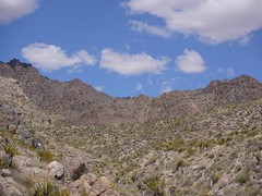 providence mountains (randomtruth) Tags: california mojavedesert sanbernardinocounty providencemountains