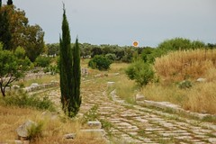 All roads lead to Shell (LauraEvelynEdwards) Tags: road archaeology turkey greek ancient ruins roman ruin shell globalization capitalism archaeological globalisation development hellenistic didyma templeofapollo didim ancientroad hellenisticperiod shellpetrol