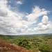Wide Angle Shot of Mt Elgon Area