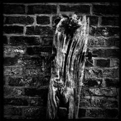 Retired Gatepost (iPhone 4) (Portable Pixel) Tags: england bw monochrome farm gb agriculture staffordshire iphone newcastleunderlyme blackeys nikcolorefexpro hipstamatic
