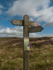Sign post (Jackie & Dennis) Tags: shdrc buxton a2 recce