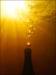 That Champagne Moment (McRusty) Tags: underwater shadow light silhouette bubbles sun sunshine rays vintage champagne bottle loch kemp dell estate stratherrick highland scotland contre jour back lit golden glow snorkeling photography