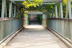 Passerelle (A Great Capture) Tags: passerelle pont symmetry lines nature springvalleyravine valeofavoca agreatcapture agc wwwagreatcapturecom adjm toronto on ontario canada canadian photographer ash2276 ashleylduffus ald mobilejay jamesmitchell summer summertime 2016 pedestrian bridge foot beltline trail mooreparkravine rosedale metal structure footbridge torontoparks ravine moorepark