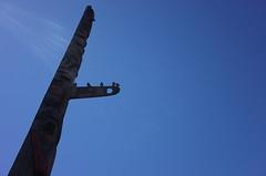 Totem birds (panfriedcharlie) Tags: totem pikeplace bluesky bird sunbeams