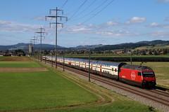 Doublette de 460 (Maxime Espinoza) Tags: re 460 sbb cff ffs train zug suisse kiesen