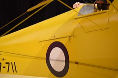 "de Havilland DH.82 Tiger Moth 45 • <a style=""font-size:0.8em;"" href=""http://www.flickr.com/photos/81723459@N04/29017891725/"" target=""_blank"">View on Flickr</a>"