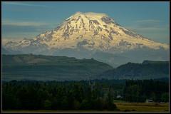 Mount Rainier in Early Summer (Ernie Misner) Tags: mountrainier mountain washingtonstate washington erniemisner hdr lightroom nik capturenx2 cnx2 f8andbethere hoyahd3polarizer